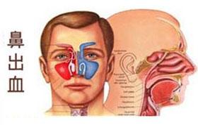 包皮诊疗技术